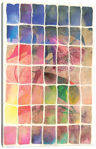 Smokey Floral Series: Rainbow Canvas Print #AIM29