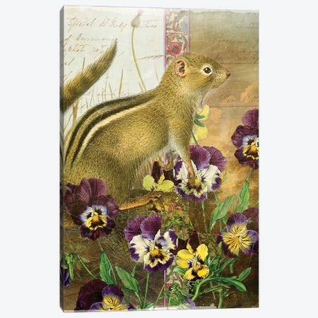 Chipmunk Canvas Print #AIM34} by Aimee Stewart Canvas Artwork