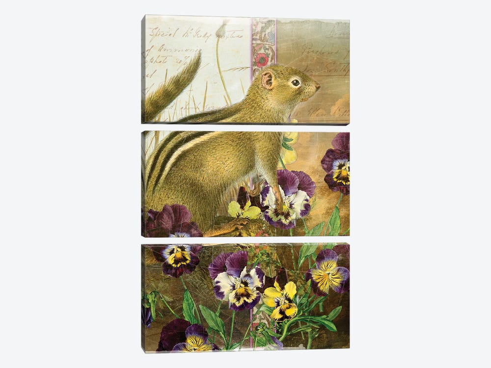 Whimsical Animals Series: Chipmunk by Aimee Stewart 3-piece Art Print