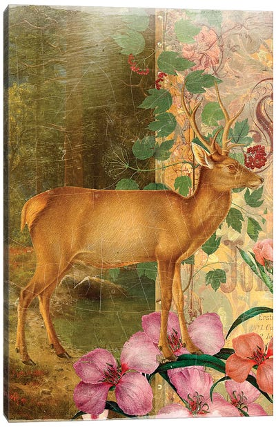 Whimsical Animals Series: Deer Canvas Print #AIM35