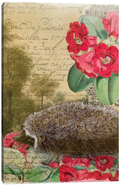 Whimsical Animals Series: Hedgehog Canvas Art Print