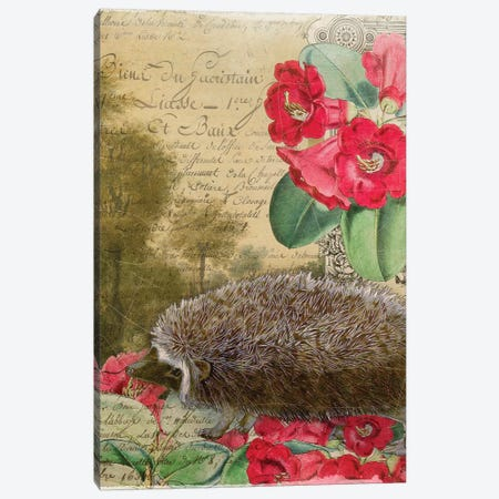 Hedgehog Canvas Print #AIM37} by Aimee Stewart Canvas Wall Art