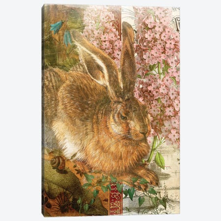 Rabbit 3-Piece Canvas #AIM38} by Aimee Stewart Canvas Art Print