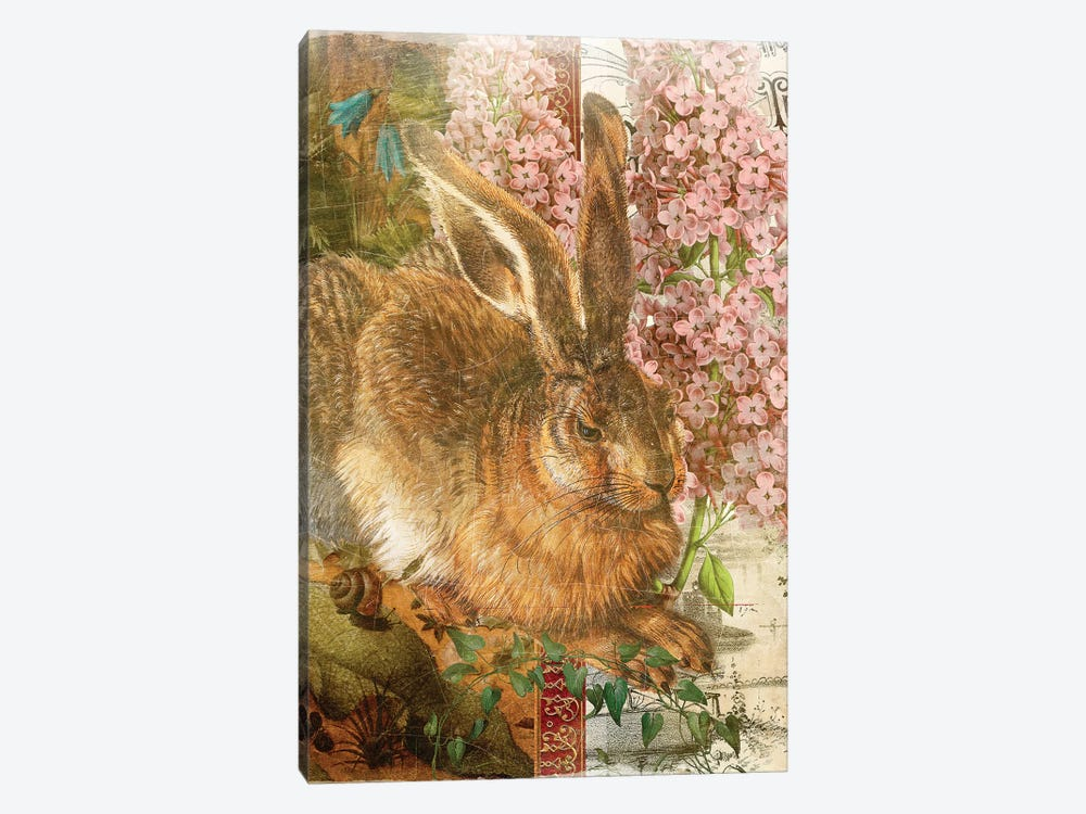 Rabbit by Aimee Stewart 1-piece Art Print
