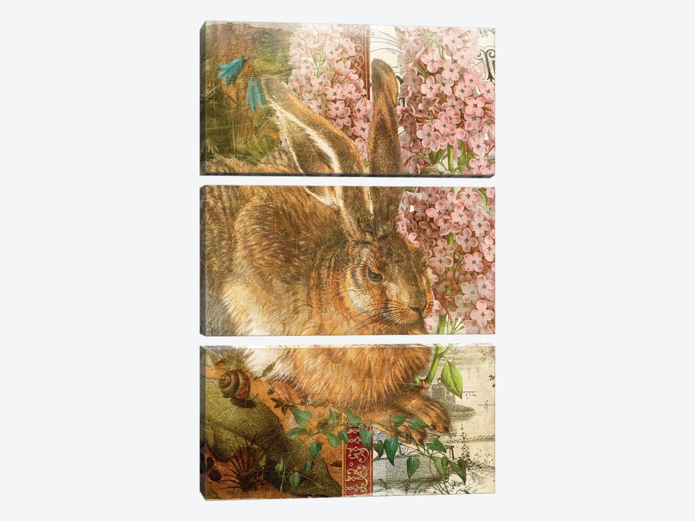 Rabbit by Aimee Stewart 3-piece Canvas Print