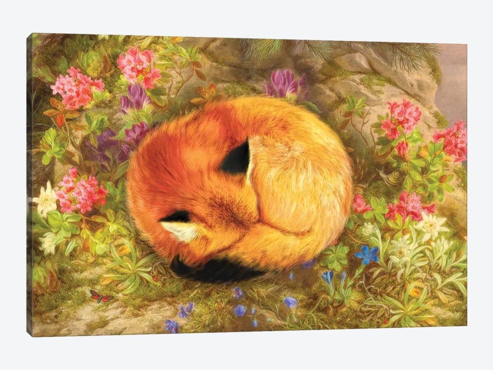 The Cozy Fox by Aimee Stewart 1-piece Canvas Artwork