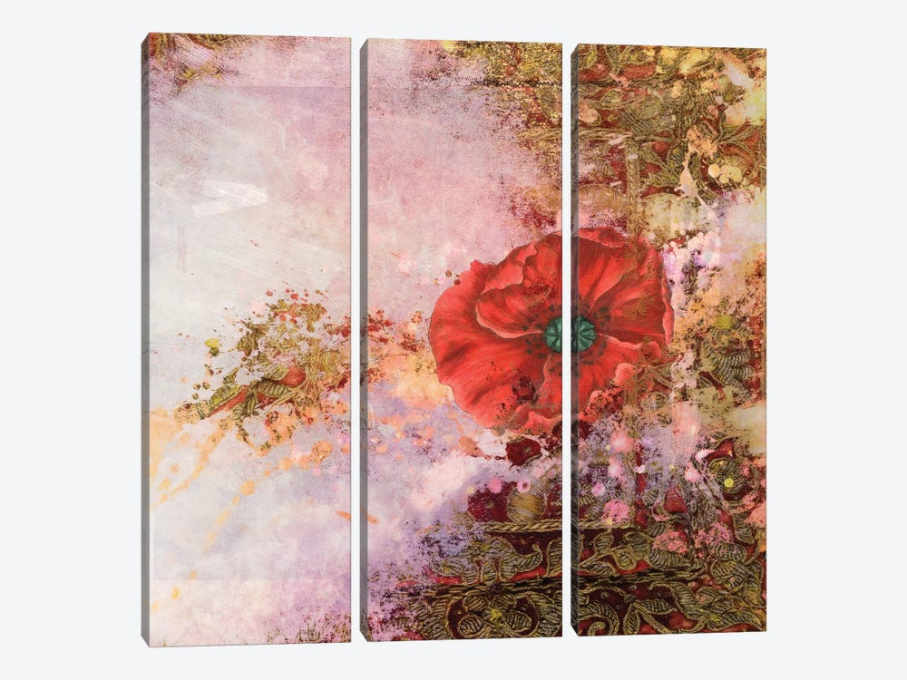 Ancient Future Series: Poppy Dreams 3-piece Canvas Wall Art