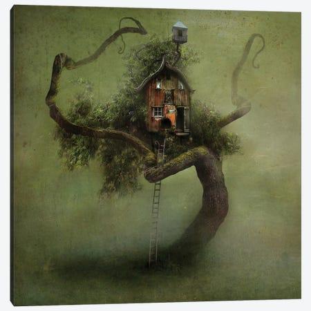 Wheatherworn Canvas Print #AJA40} by Alexander Jansson Canvas Artwork