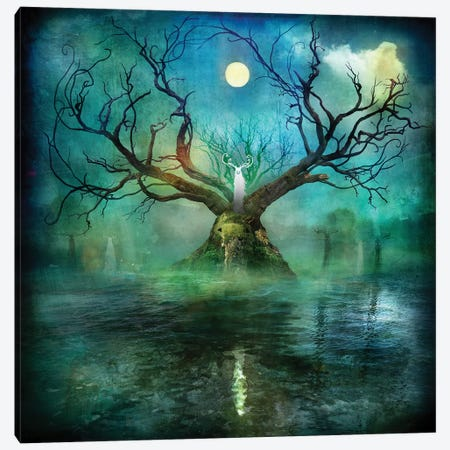 Beanna Cornibus Canvas Print #AJA7} by Alexander Jansson Canvas Artwork