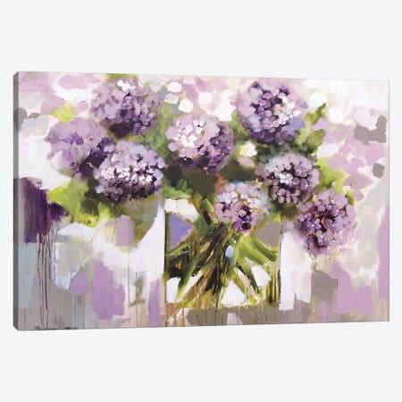 Blush Hydrangea Canvas Print #AJB21} by Amanda J. Brooks Canvas Print