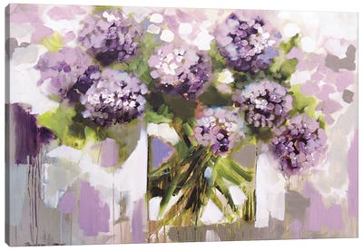 Blush Hydrangea Canvas Art Print