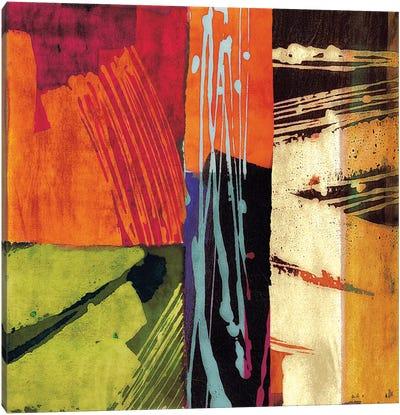 Colors II Canvas Art Print