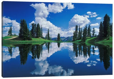 Forest Landscape And Its Reflection, Gunnison National Forest, Colorado, USA Canvas Art Print