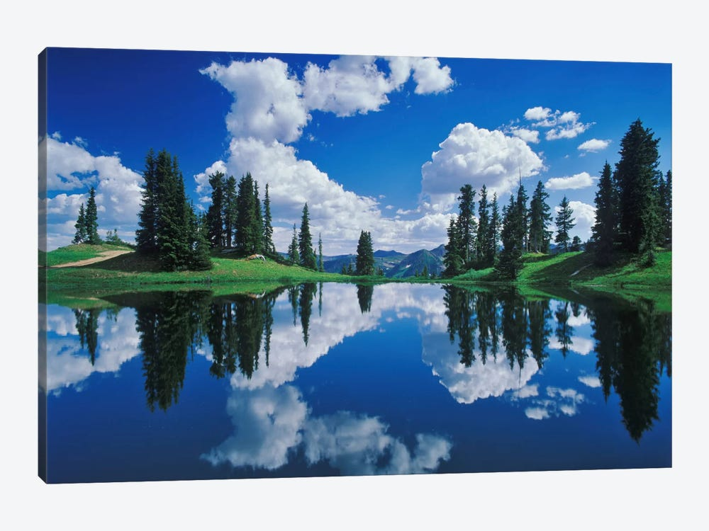 Forest Landscape And Its Reflection, Gunnison National Forest, Colorado, USA by Adam Jones 1-piece Canvas Art