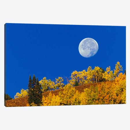 Autumn Moon At Sunrise, Gunnison National Forest, Colorado, USA Canvas Print #AJO13} by Adam Jones Canvas Art Print