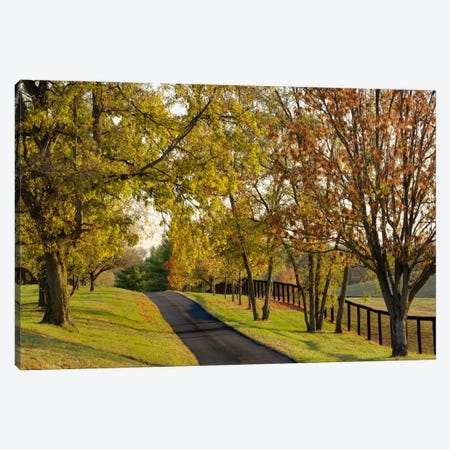 Rural Autumn Landscape I, Bluegrass Region, Kentucky, USA Canvas Print #AJO18} by Adam Jones Canvas Art Print