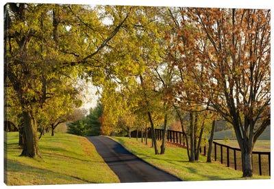 Rural Autumn Landscape I, Bluegrass Region, Kentucky, USA Canvas Art Print