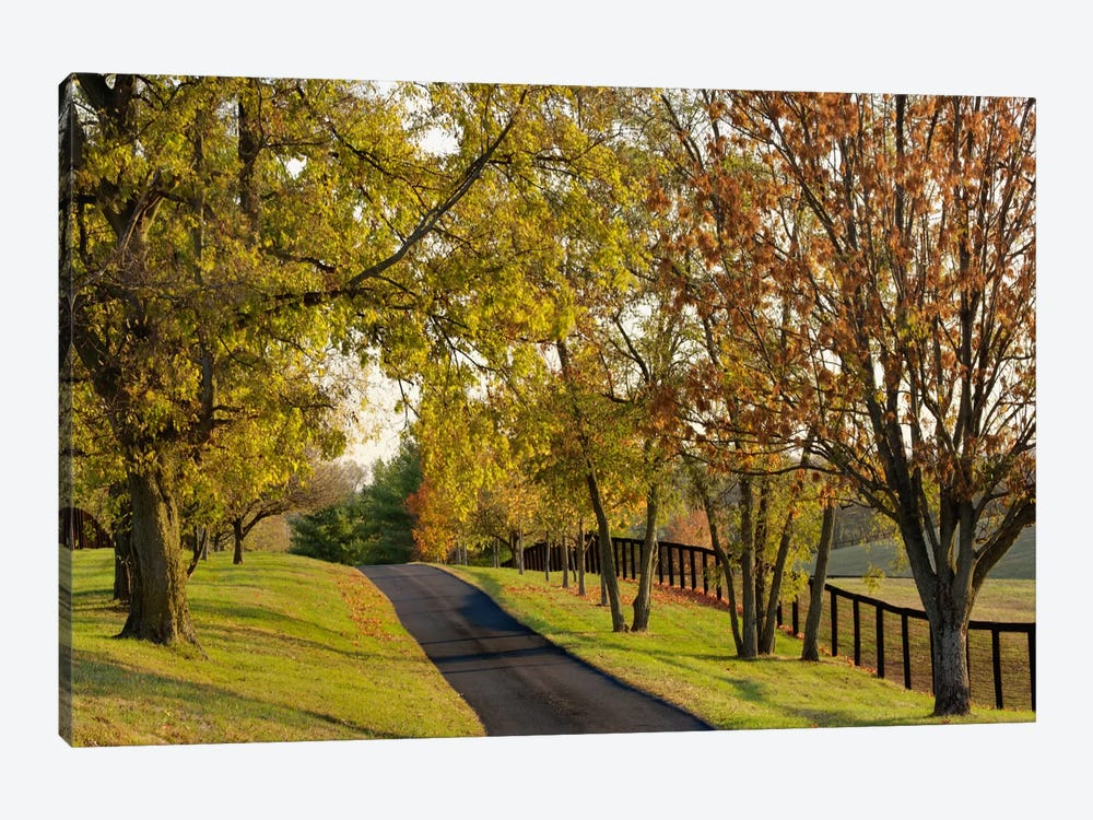 Rural Autumn Landscape I, Bluegrass Region, Kentucky, USA by Adam Jones 1-piece Canvas Wall Art