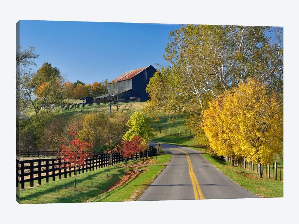Rural Autumn Landscape II, Bluegrass Region, Kentucky, USA by Adam Jones 1-piece Canvas Print