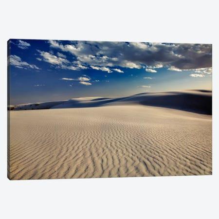 Rippled Dunes, White Sands National Monument, Tularosa Basin, New Mexico, USA Canvas Print #AJO23} by Adam Jones Canvas Artwork