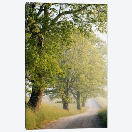Hyatt Lane, Cades Cove, Great Smoky Mountains National Park, Tennessee, USA Canvas Print #AJO27} by Adam Jones Canvas Print