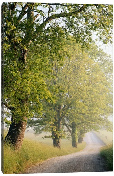 Hyatt Lane, Cades Cove, Great Smoky Mountains National Park, Tennessee, USA Canvas Art Print