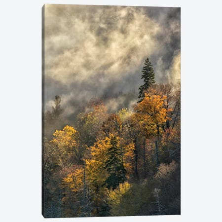 Autumn Colors And Mist At Sunrise, Blue Ridge Mountains At Sunrise, North Carolina Canvas Print #AJO38} by Adam Jones Canvas Print