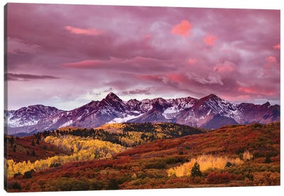 Autumn, Aspen Trees And Sneffels Range At Sunset, Mount Sneffels Wilderness. Colorado Canvas Art Print