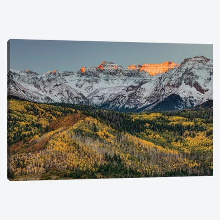 Autumn, Aspen Trees and Sneffels Range, Uncompahgre National Forest, Colorado I Canvas Print #AJO41} by Adam Jones Canvas Artwork