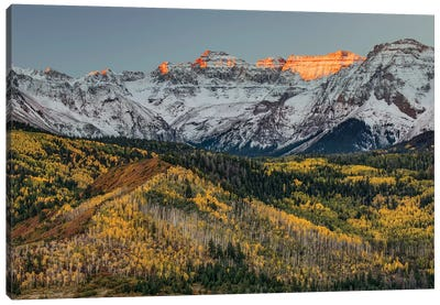 Autumn, Aspen Trees and Sneffels Range, Uncompahgre National Forest, Colorado I Canvas Art Print