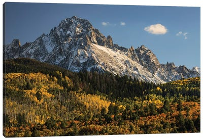 Autumn, Aspen Trees And Sneffels Range, Uncompahgre National Forest, Colorado II Canvas Art Print