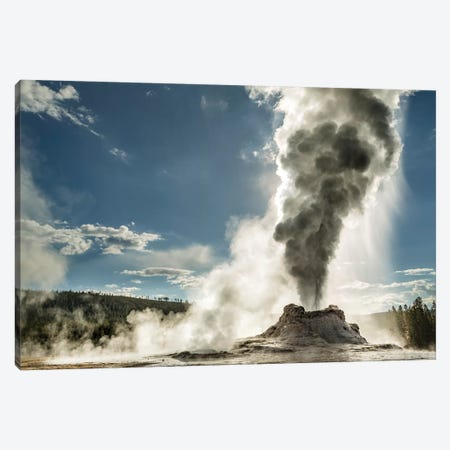Castle Geyser erupting, Upper Geyser Basin, Yellowstone National Park, Wyoming Canvas Print #AJO48} by Adam Jones Canvas Wall Art