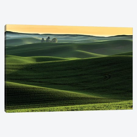 Rolling hills covered in wheat at sunset, Palouse region, Washington State. Canvas Print #AJO78} by Adam Jones Canvas Print