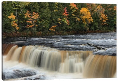 Tahquamenon Falls, Tahquamenon Falls State Park, Whitefish, Michigan I Canvas Art Print