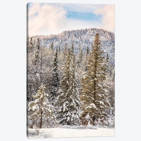 Winter mountain scene, Montana Canvas Print #AJO89} by Adam Jones Canvas Art