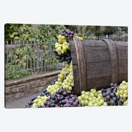 Grape Harvest In Zoom II, Festa dell'Uva, Impruneta, Florence Province, Tuscany Region, Italy Canvas Print #AJO8} by Adam Jones Art Print