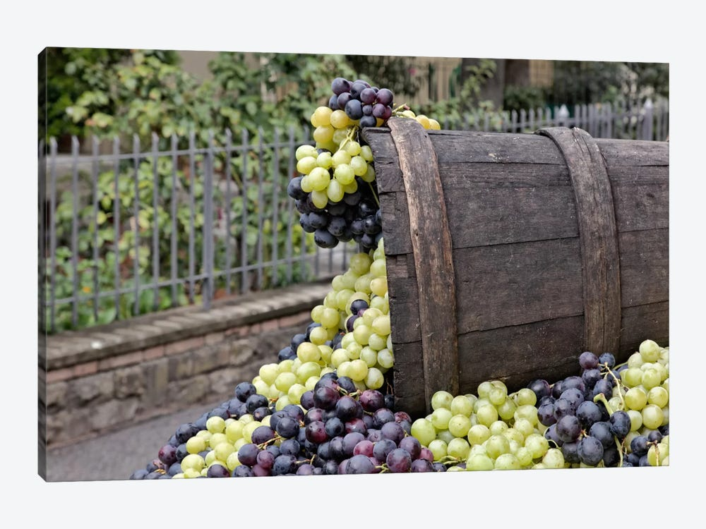 Grape Harvest In Zoom II, Festa dell'Uva, Impruneta, Florence Province, Tuscany Region, Italy by Adam Jones 1-piece Canvas Artwork