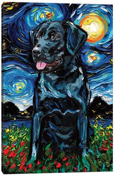Black Labrador Night IV Canvas Art Print
