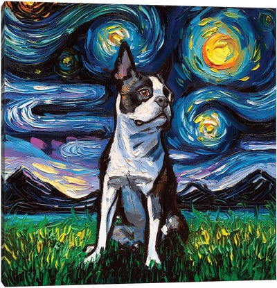 Boston Terrier Night II Canvas Art Print