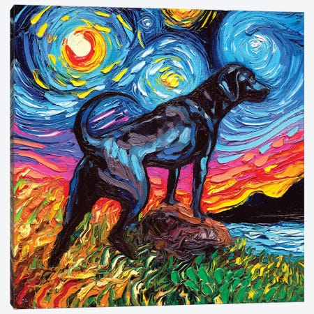 Black Labrador Night II Canvas Print #AJT10} by Aja Trier Canvas Art