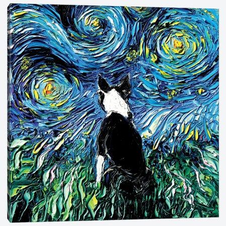 Boston Terrier Night Canvas Print #AJT114} by Aja Trier Canvas Art