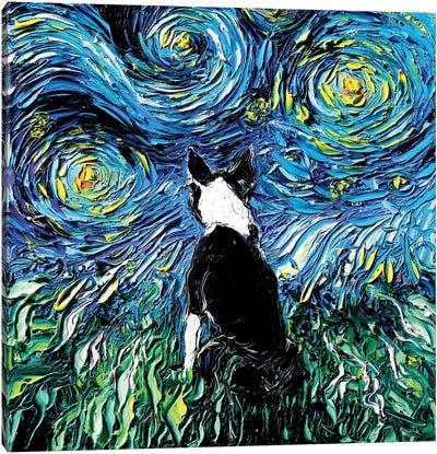 Boston Terrier Night Canvas Art Print