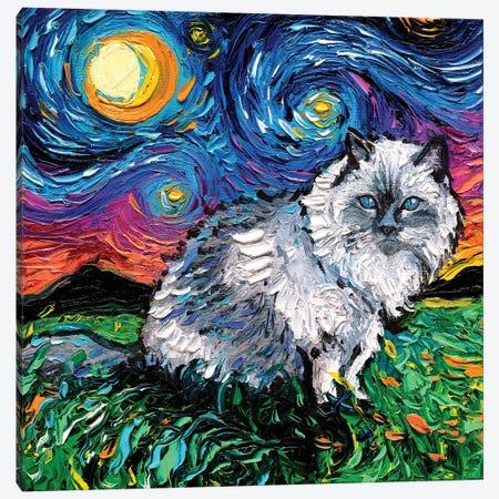 Ragdoll Cat Night Canvas Print #AJT117} by Aja Trier Canvas Art
