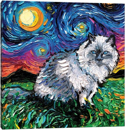 Ragdoll Cat Night Canvas Art Print