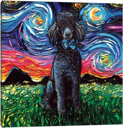 Black Poodle Night Canvas Art Print