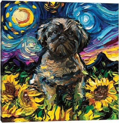 Shih Tzu Night II Canvas Art Print