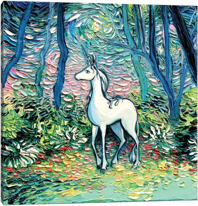 In The Shadow Of The Forest Canvas Art Print