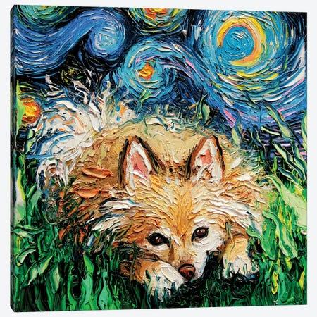 Pomeranian Night Canvas Print #AJT135} by Aja Trier Canvas Art