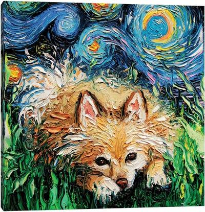 Pomeranian Night Canvas Art Print