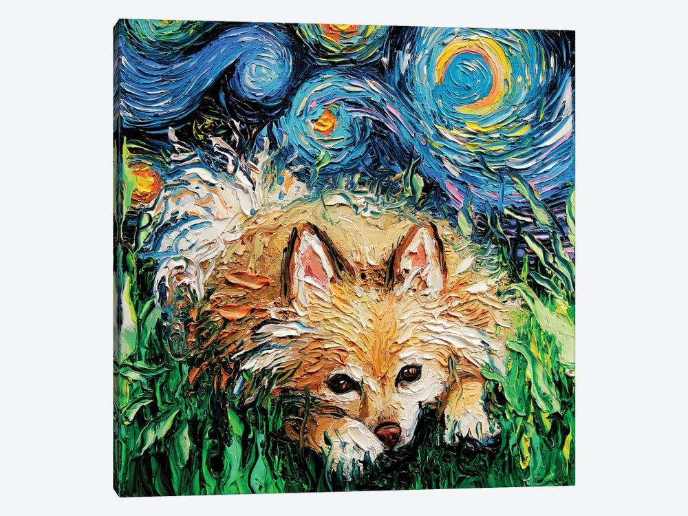 Pomeranian Night by Aja Trier 1-piece Canvas Wall Art